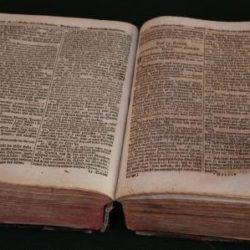Bibel web